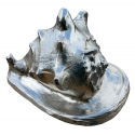 Silver Guilt Leaf Plated Shell Ornament