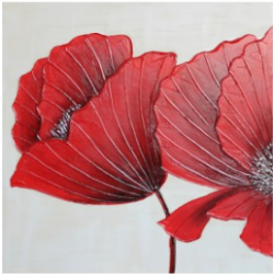 Red Poppies Canvas CP130