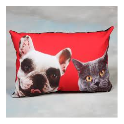 Red Cat And Dog Cushion