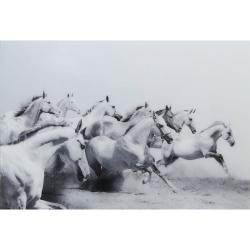 White & Grey Horses Tempered Glass Art Print