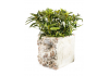 Large Rustic Stone Effect Classical Mouth Planter