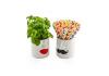Mr & Mrs s/2 White Ceramic Pots