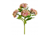 Ornamental Pink Hydrangea 5 Flower Stem