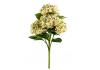 Ornamental Green Hydrangea 5 Flower Stem