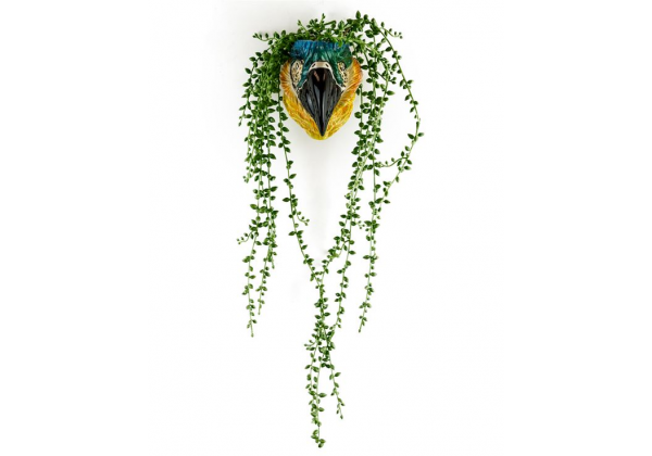 Ceramic Macaw/Parrot Head Wall Sconce Vase