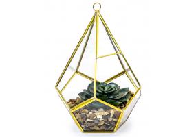 Medium Gold Metal and Glass Terrarium